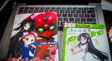 Loots: Accel World Vol.4 & Saki Ryuka Character Single